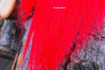 Bucktail - Red