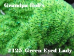 Chenille - Green Eyed Lady #125 - 72 Yard Skein