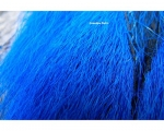 Bucktail - Blue