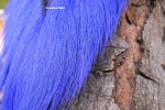Bucktail - Purple