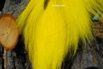 Bucktail - Yellow
